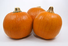 Pumpkin Trio. Three high resolution pumpkins isolated on a white background Royalty Free Stock Photos