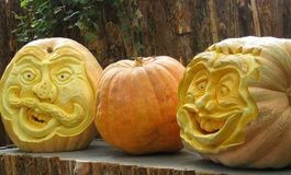 Pumpkin Trio. Three large pumpkins are ready for Halloween visitors, with their carved faces and funny teeth Stock Images