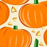 Pumpkin Tropical seamless pattern design Stock Photography