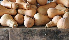 Pumpkin. 2014 Tuscany Maremma Italy Macro Royalty Free Stock Image