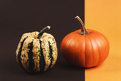 Pumpkin on two-colored background Stock Photo