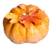 Pumpkin and two maple leaves on white background Royalty Free Stock Photos