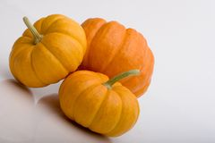 Pumpkin and Two Squash. A bunch of orange pumpkin squash Royalty Free Stock Photography