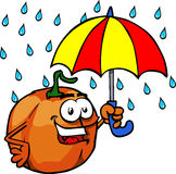 Pumpkin with umbrella Stock Images