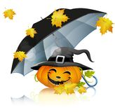 Pumpkin under a black umbrella Royalty Free Stock Photography