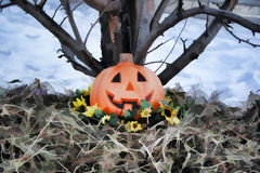 Pumpkin Under a Tree. Pumpkin surrounded by sunflowers and fall leaves under a tree Royalty Free Illustration