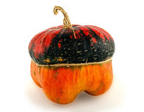 Pumpkin Of Unusual Form Royalty Free Stock Image
