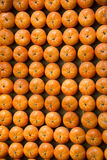 Pumpkin, Stock Images