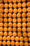 Pumpkin, Stock Images