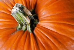 Pumpkin V4 Royalty Free Stock Photos