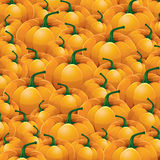 Pumpkin vector Background Royalty Free Stock Images
