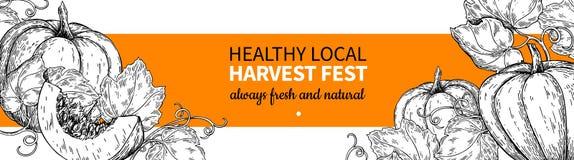 Pumpkin vector banner. Hand drawn vintage Harvest festival frame. Farm Market sketch. Illustration. Vegetable set of organic products. Detailed food drawing royalty free illustration