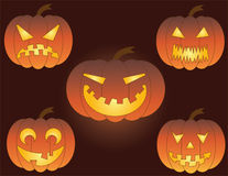 Pumpkin. Vector illustration. Royalty Free Stock Image