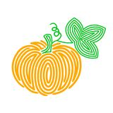 Pumpkin. Vector illustration isolated on white background Stock Photos