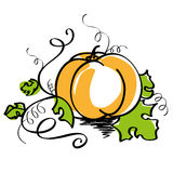 Pumpkin. Vector illustration of orange pumpkin with curved stem and green leaves isolated on white background vector illustration