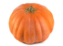 Pumpkin vegetable Royalty Free Stock Photos