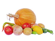 Pumpkin and vegetables Stock Images