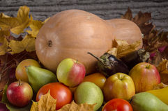 Pumpkin with vegetables, fruits and yellow leave Royalty Free Stock Images