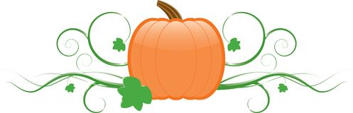 Pumpkin & Vines Stock Photography