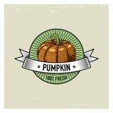 Pumpkin Vintage set of labels, emblems or logo for vegeterian food, vegetables hand drawn or engraved. Retro farm royalty free illustration