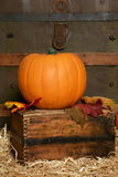 Pumpkin in vintage setting Stock Photos