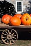 Pumpkin Wagon Royalty Free Stock Photo