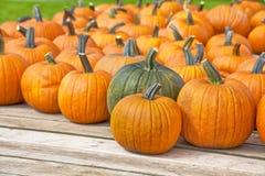 Pumpkin Wagon Stock Photos