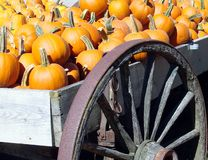 Pumpkin Wagon Stock Images
