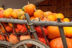 Pumpkin wagon Stock Photo