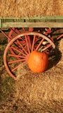 Pumpkin by a Wagon Wheel Royalty Free Stock Images