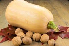 Butternut Pumpkin and walnuts Royalty Free Stock Photos