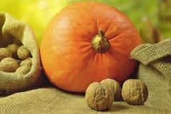 Pumpkin and walnuts stock photo