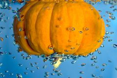 Pumpkin in a water Royalty Free Stock Photos