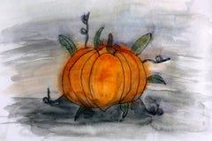 Pumpkin. Watercolour hand drawing. Royalty Free Stock Images