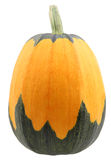 Pumpkin on white. Colorful single pumpkin isolated on white Royalty Free Stock Photos