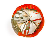 Pumpkin on White Royalty Free Stock Photography