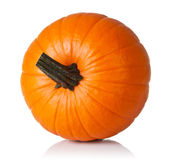 Pumpkin on white Stock Images