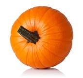 Pumpkin on white. Fresh orange pumpkin  on white background. Top view Stock Images