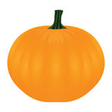 Pumpkin on white backgroun Stock Photo