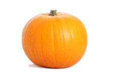 Pumpkin on the white background. Pumpkin isolated on the white background Stock Images