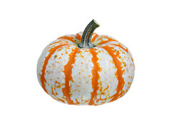 Pumpkin on white background Stock Photo