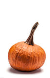 Pumpkin  on white background Royalty Free Stock Photo