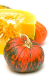 Pumpkin on a white background close-up. in the photo. Royalty Free Stock Photo