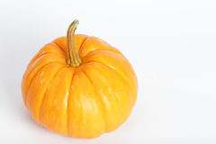 Pumpkin. On the white background do holloween object Stock Photography