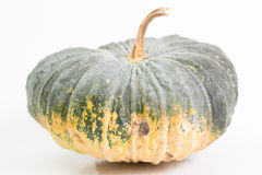 Pumpkin. On the white background do holloween object Stock Photos