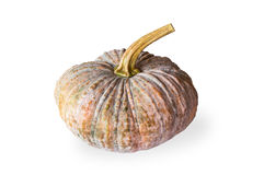 Pumpkin on white background. Isolate Royalty Free Stock Photos