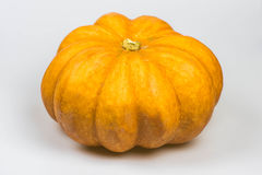 Pumpkin  on a white background Stock Image