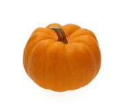 Pumpkin on white background. Orange color Royalty Free Stock Photography