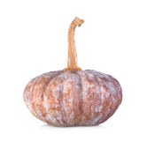 Pumpkin  on white background Stock Photography