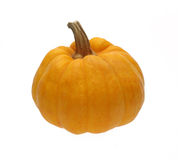 Pumpkin on white background. Yellow color Stock Images